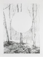 antas/2017/AXEL_ANTAS_FOREST_AND_ELLIPSE_OBSCURED_2016