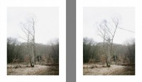 unseen/2012/shaped-views-sudden-gust-of-wind